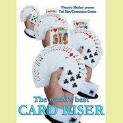 Card Riser